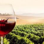 glass-red-wine-sunny-vineyard-landscape-splashing-sunset-59741172